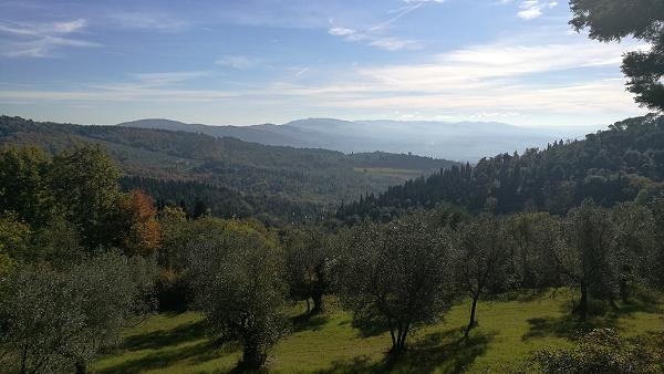 Fiesole view